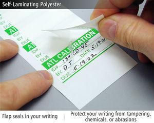 Self-Laminating Polyester